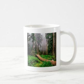 Park Fallen Nurse Log Redwood California Coffee Mug
