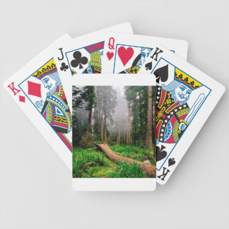 Park Fallen Nurse Log Redwood California Bicycle Playing Cards