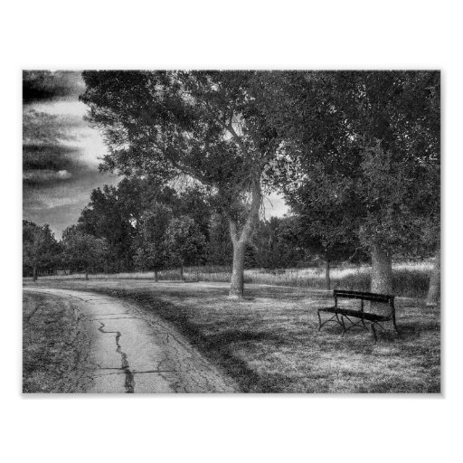 Park In Black And White Poster