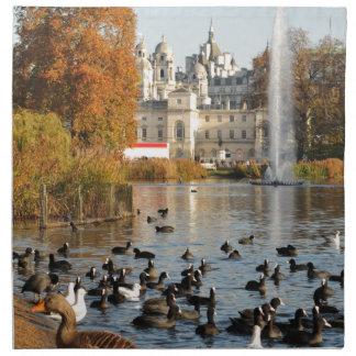 Park in London UK Napkin