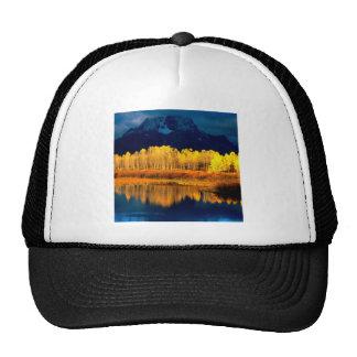 Park Quaking Aspen Moran Grand Tetons Wyoming Cap