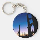 Park Saguaro Keychains