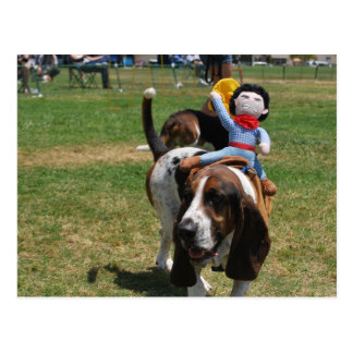 Park the Basset Hound Postcard