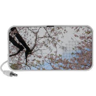 Park Trees Cherry Blossoms Flowers Garden Spring Laptop Speakers