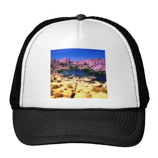 Park Vivid Vista Joshua Tree California Hat