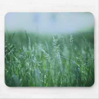 Park with green detail mouse mat