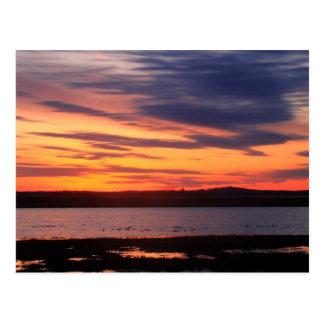 Parker River National Wildlife Refuge Sunset Postcard
