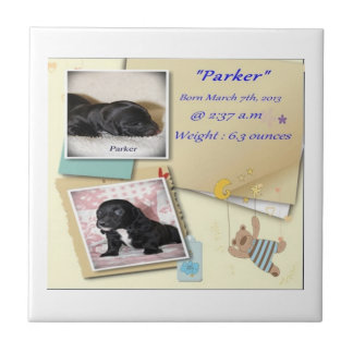 Parkers Birth Certificate Tile