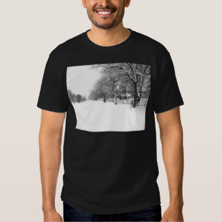 Parley Street In The Bleak Midwinter Tshirts