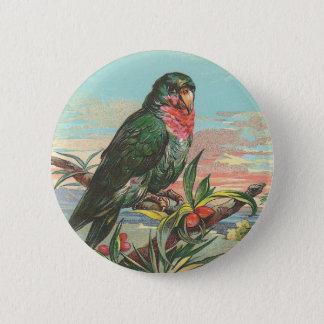 Parrot 6 Cm Round Badge