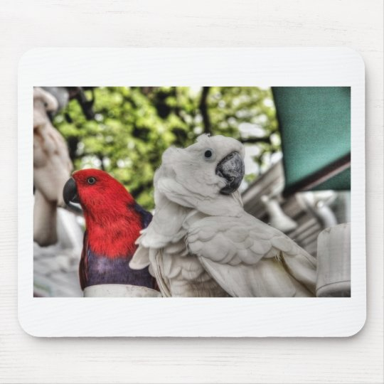 Parrot and Cockatoo Mouse Pad