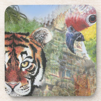 Parrot and tiger coaster
