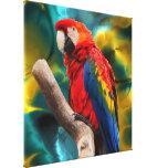 Parrot Art 1 Canvas Prints