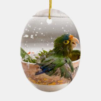 Parrot Bath Time Fun Ornament