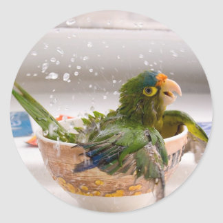 Parrot Bath Time Fun Stickers