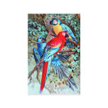 Parrot Birds Painting Stretched Canvas Print
