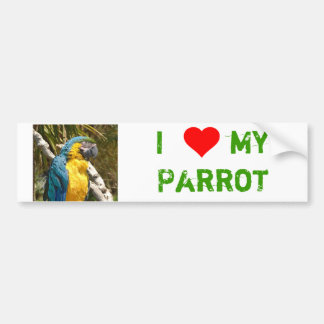 Parrot Bumper Sticker