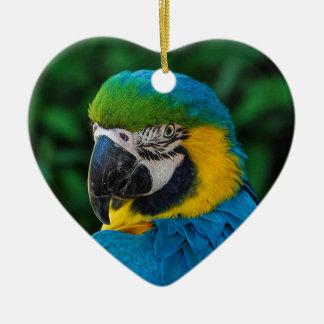 Parrot Christmas Ornament