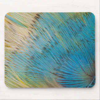 Parrot Feather Abstract Close Up Mouse Mat