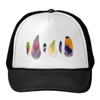 Parrot Feather Collection Cap