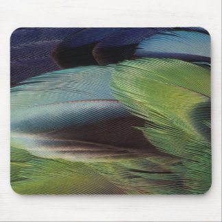 Parrot feather pattern design mouse mat