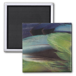 Parrot feather pattern design square magnet