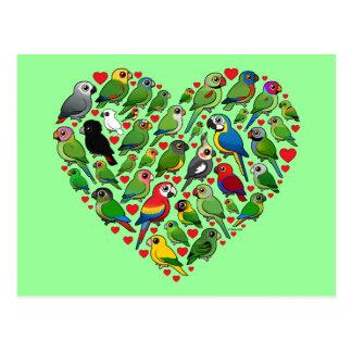 Parrot Heart Postcard
