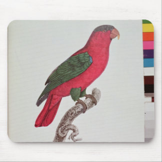 Parrot: Lory or Collared Mouse Mat
