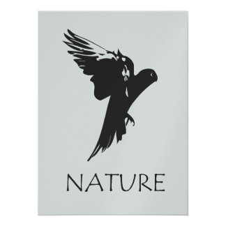 Parrot Macaw   Nature Series Products 14 Cm X 19 Cm Invitation Card