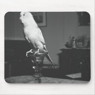 Parrot sitting on candlestick B&W Mouse Mat