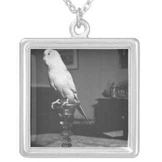 Parrot sitting on candlestick B&W Silver Plated Necklace