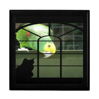 Parrot Spots Cat Large Square Gift Box
