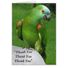 Parrot Thank You Card