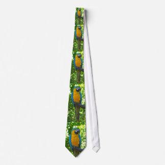 Parrot, Tie