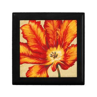 Parrot Tulip II Gift Box