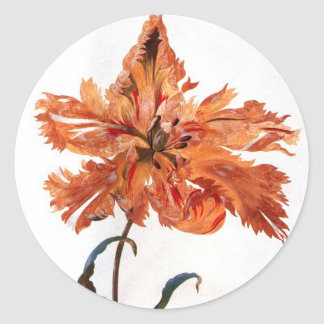 Parrot Tulip Stickers