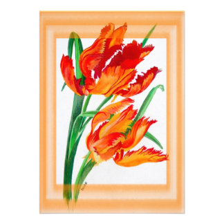 Parrot Tulip with Border Announcements