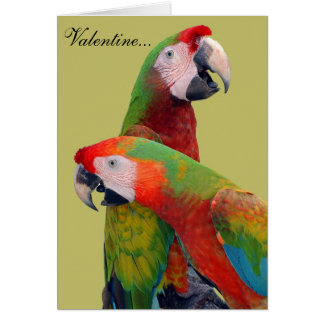 Parrot Valentine Card 007