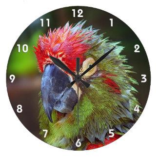 Parrot Wall Clocks