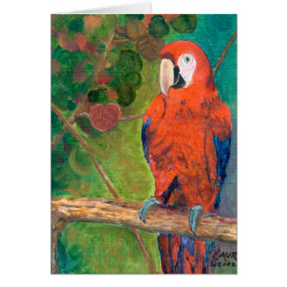 Parrot with Seagrapes Card