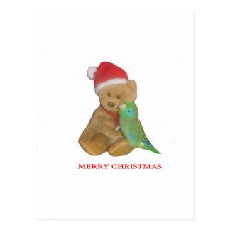 Parrotlet meets Santa Postcard