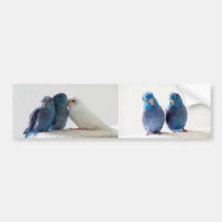 Parrotlets Pacific Blue Parrotlets Bumper Sticker