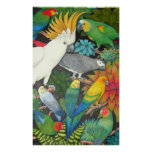 Parrots and Bromeliads Poster
