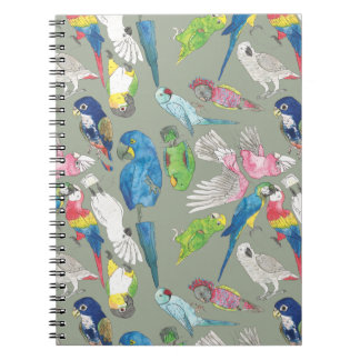 Parrots and 'Toos Notebook