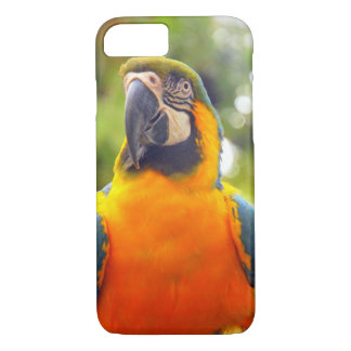 Parrots iPhone 8/7 Case