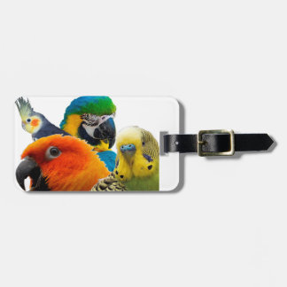 Parrots IV Luggage Tag with leather strap