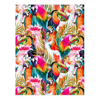 Parrots & Palm Leaves 2 Postcard