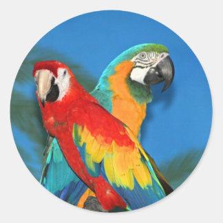 Parrots X Round Stickers