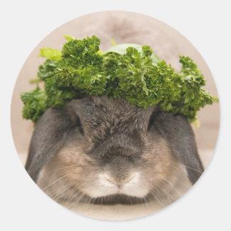Parsley bunny (sticker) round sticker