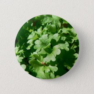 Parsley Green 6 Cm Round Badge
